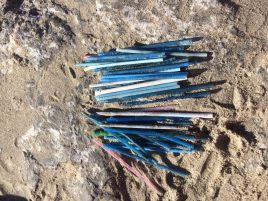 Cotton Buds on beach Ireland