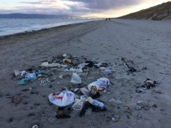 Plastic Bags litter beach Ireland.