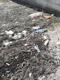 Volunteer Beach Clean Dublin