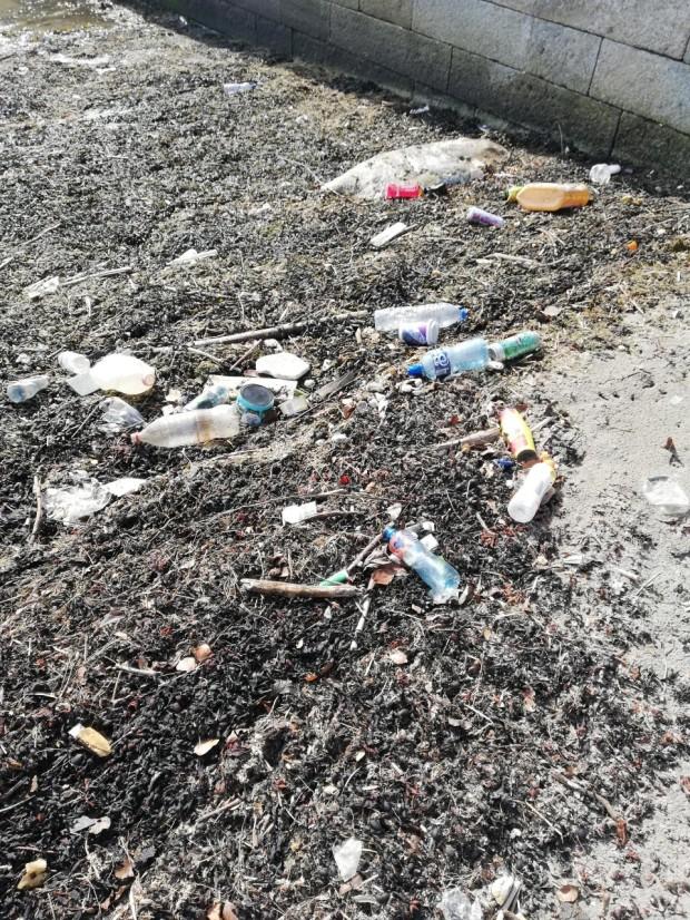 Beach Clean Dublin