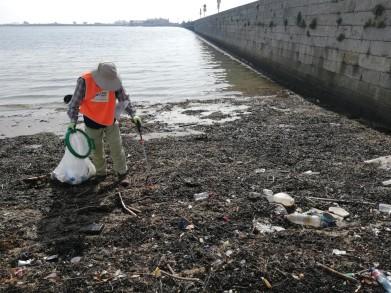 Volunteer Environment Dublin