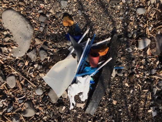 Litter in Dublin bay Biosphere