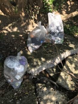 Plasric rubbish in Dublin bay Biosphere